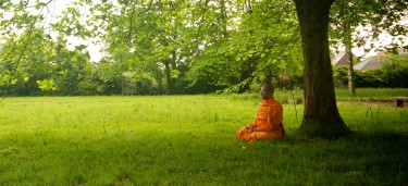 Meditating in Lede Belgium